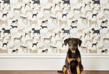 Актуально для 2018 года: мебель и декор с собаками