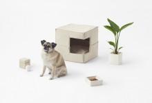 Дизайн в кубе для четвероногих питомцев