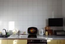 Квартира со львом. Кухня