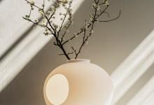 Настольная лампа: Свет и природные формы