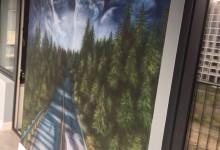 Норвежский лес на балконе