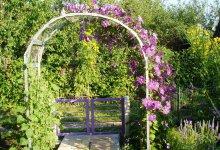 Отходы - в доходы или скоро весна - все в сад, все в сад!