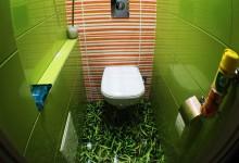 Салатный туалет с лягушкой
