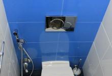 Сбежавшие из коммуналки. Часть 1. Туалет.