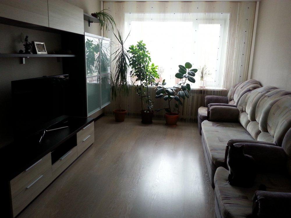 Помогите выбрать цвет дивана в гостиную. | Идеи для ремонта
